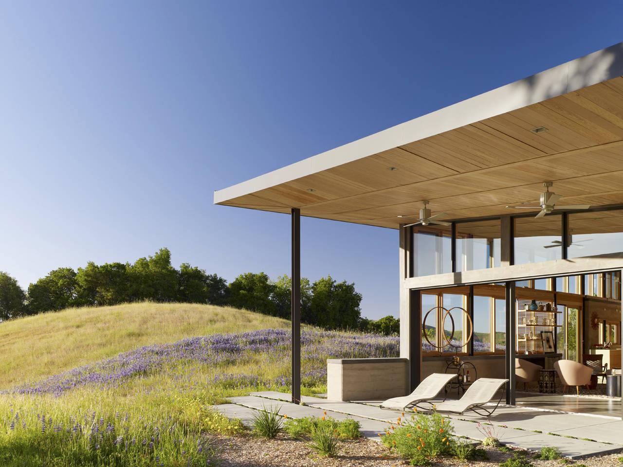 gallery of caterpillar house feldman architecture 6 ForFeldman Architecture