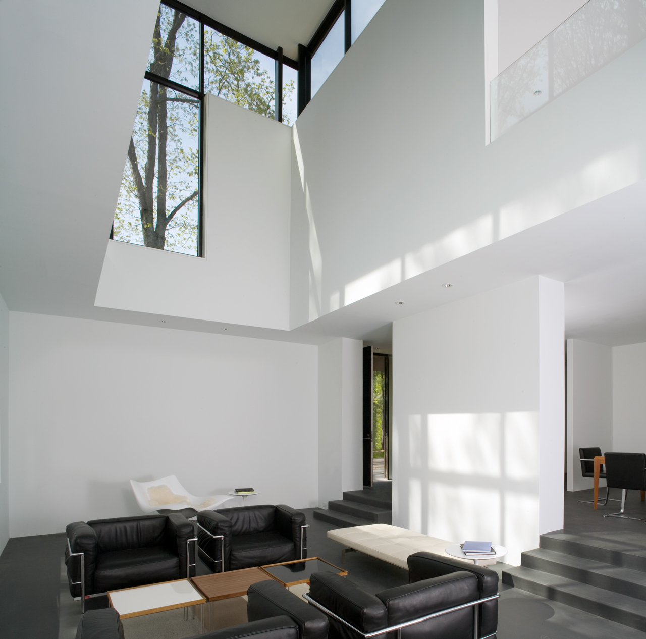 Gallery of black white residence david jameson architect 7 - The edgemoor residence by david jameson architect ...