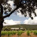 14 Viñas Winery / S.M.A.O.
