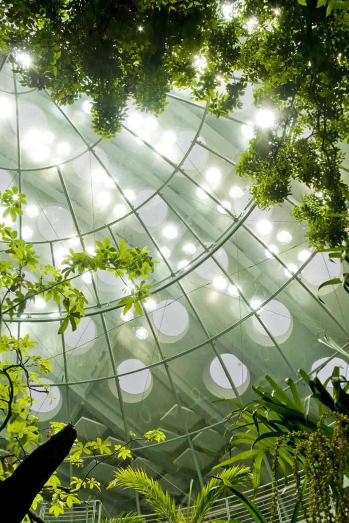 Renzo Piano Natural Science Museum