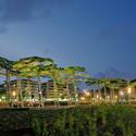 Pinar de Perruquet Park / Arteks Arquitectura
