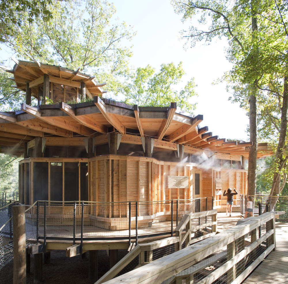 Camp Twin Lakes treehouse / Lord, Aeck & Sargent, © Jonathan Hillyer Photography