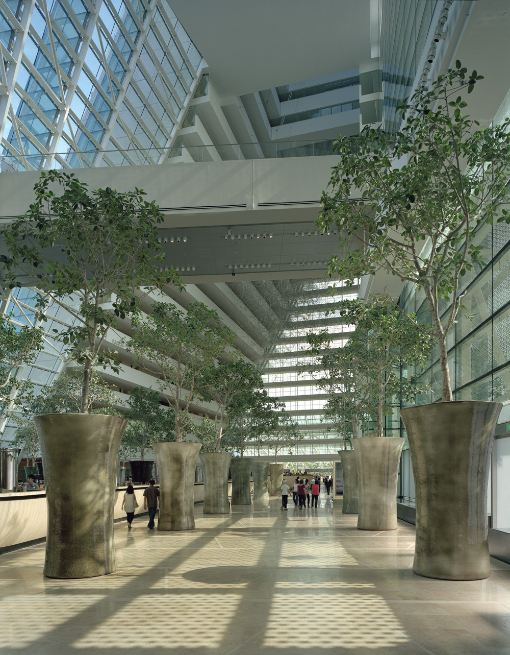 Gallery of marina bay sands safdie architects 5 - Bay architecture ...