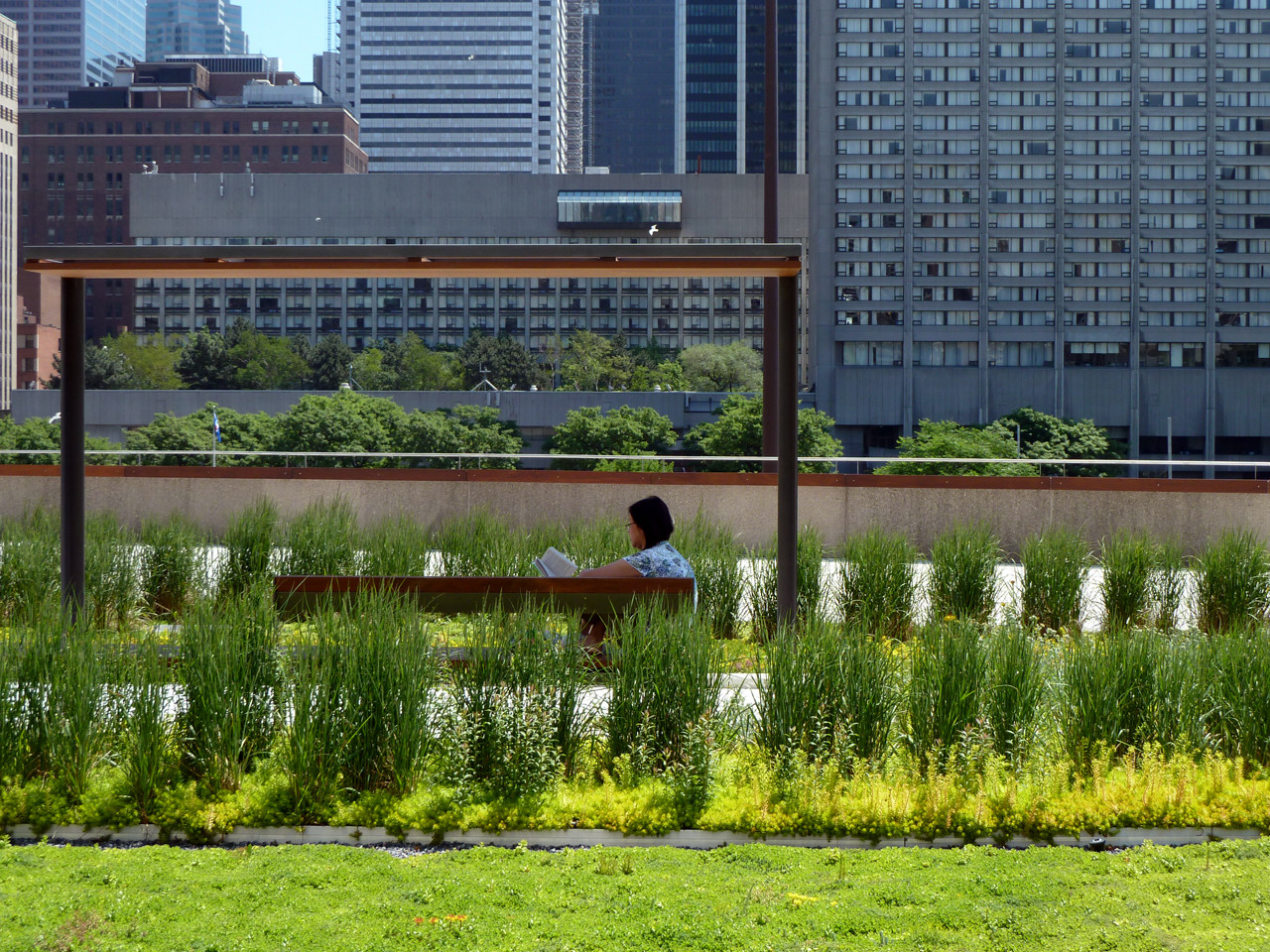NPS Podium Roof Garden / PLANT Architect & Perkins+Will Canada, © Steven Evans