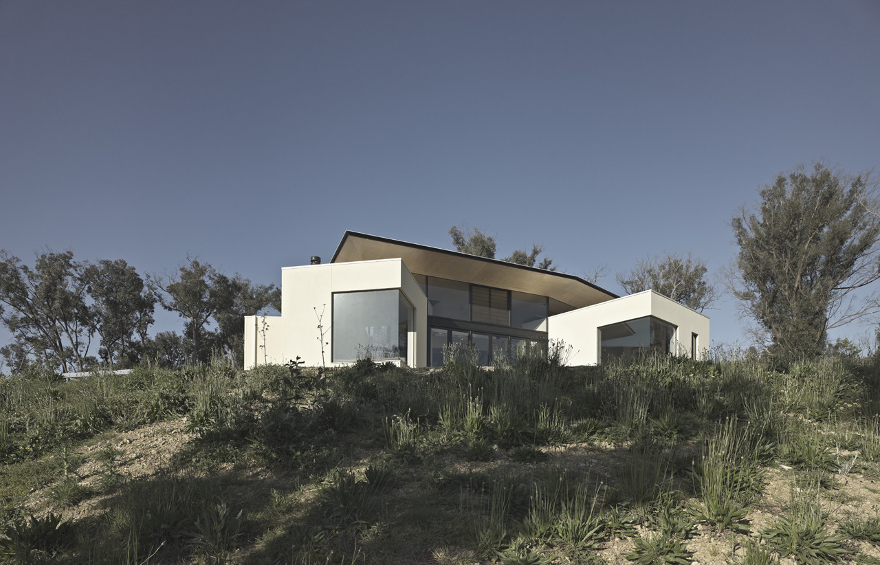 Hillside Habitat / Edwards Moore, © Peter Bennetts