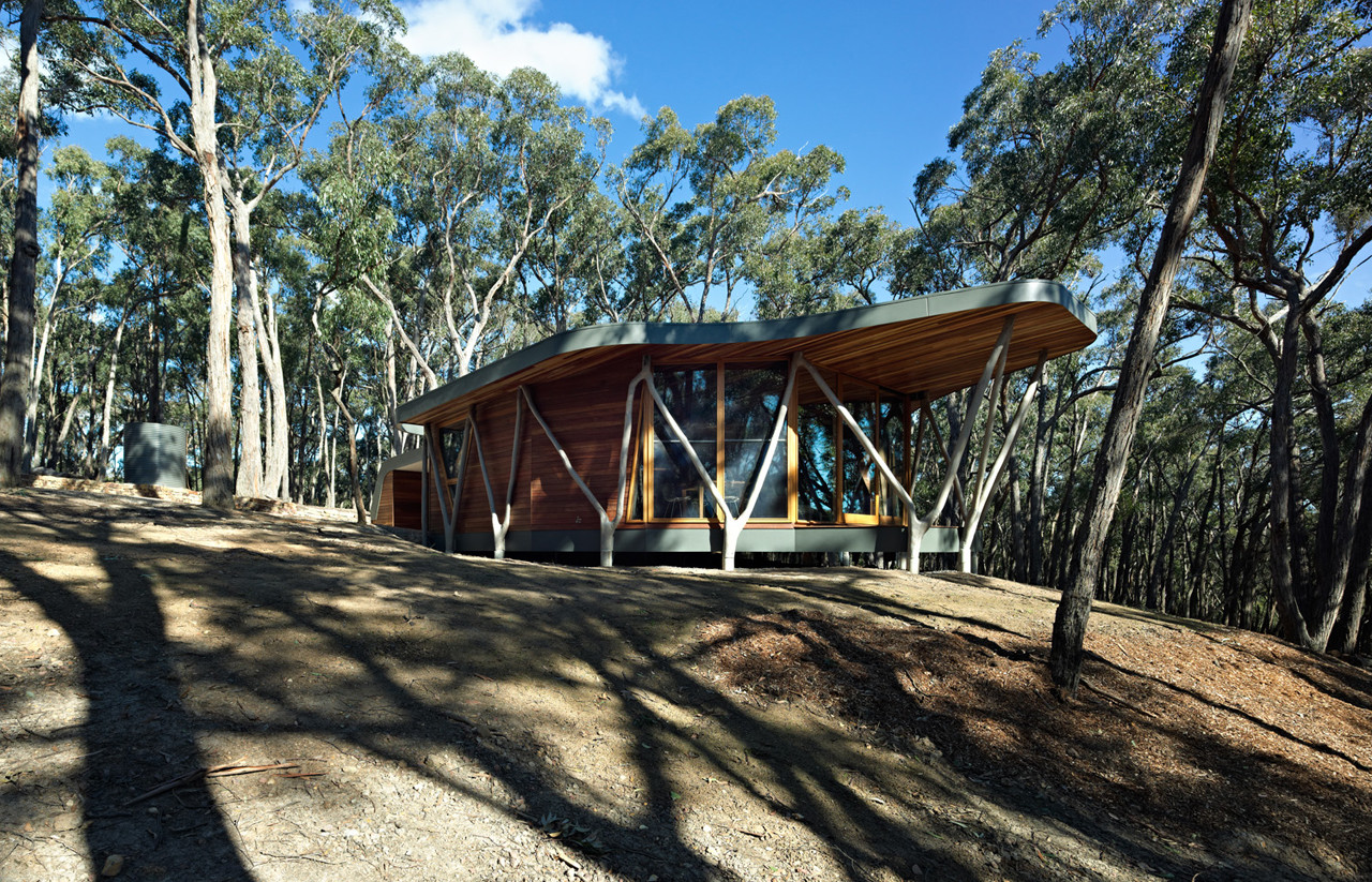 Trunk House / Paul Morgan Architects, © Peter Bennetts