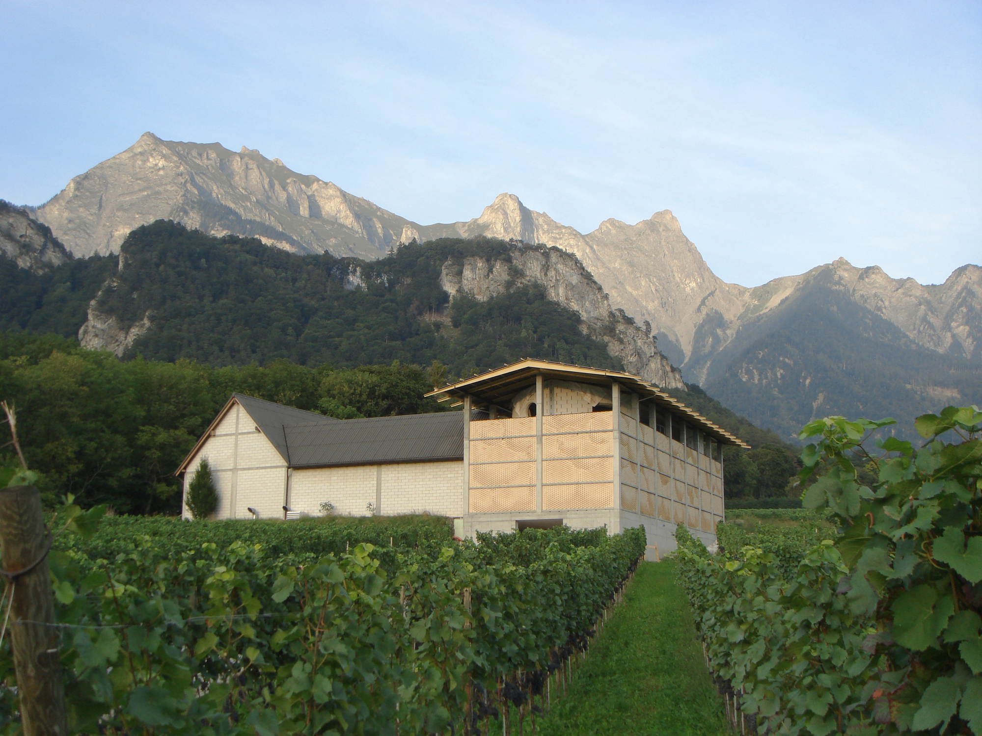 Winery Gantenbein /  Gramazio & Kohler + Bearth & Deplazes Architekten, © Gramazio & Kohler