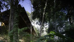 Shelter @ Rainforest / Marra + Yeh Architects