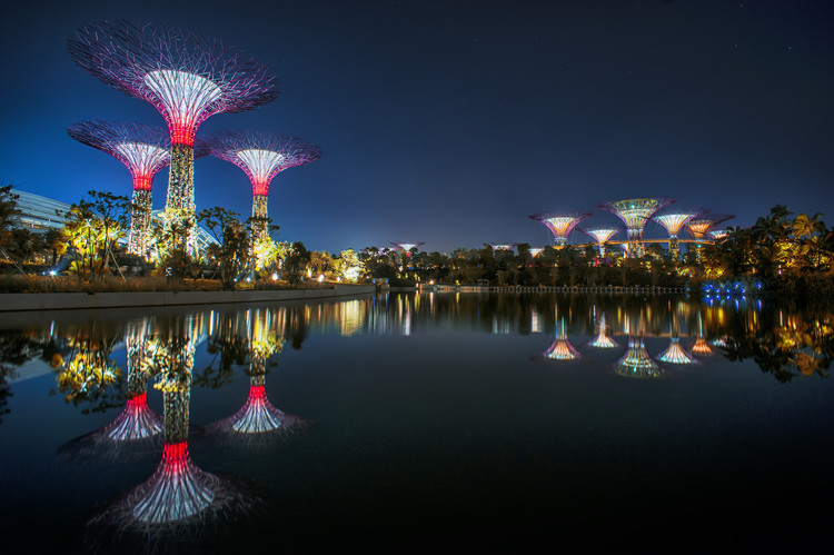 Gardens by the Bay / Grant Associates, Courtesy of grant associates