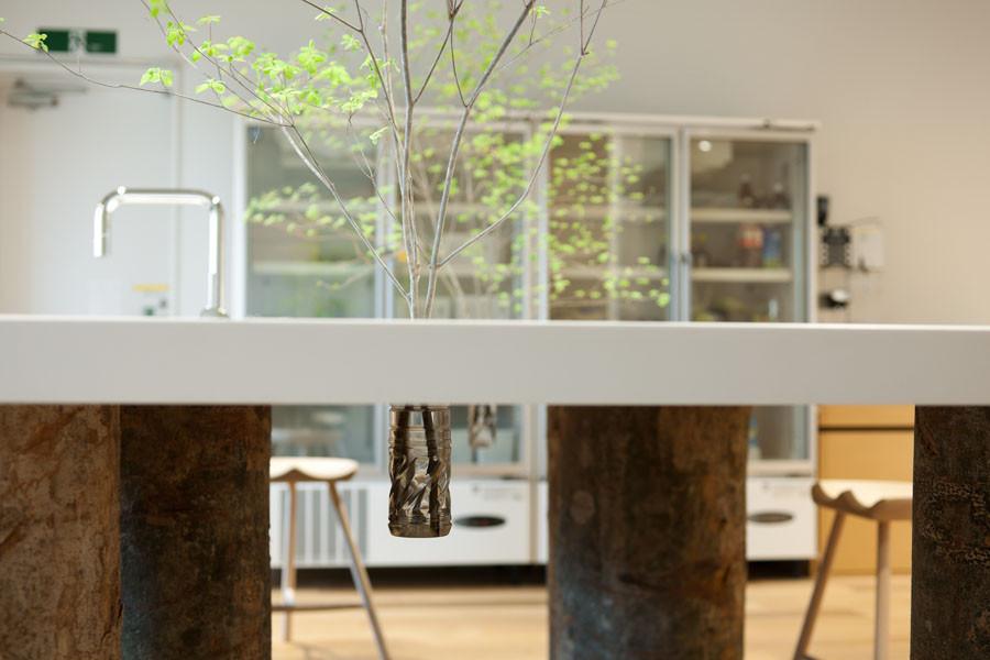 Hue Plus / Schemata Architects