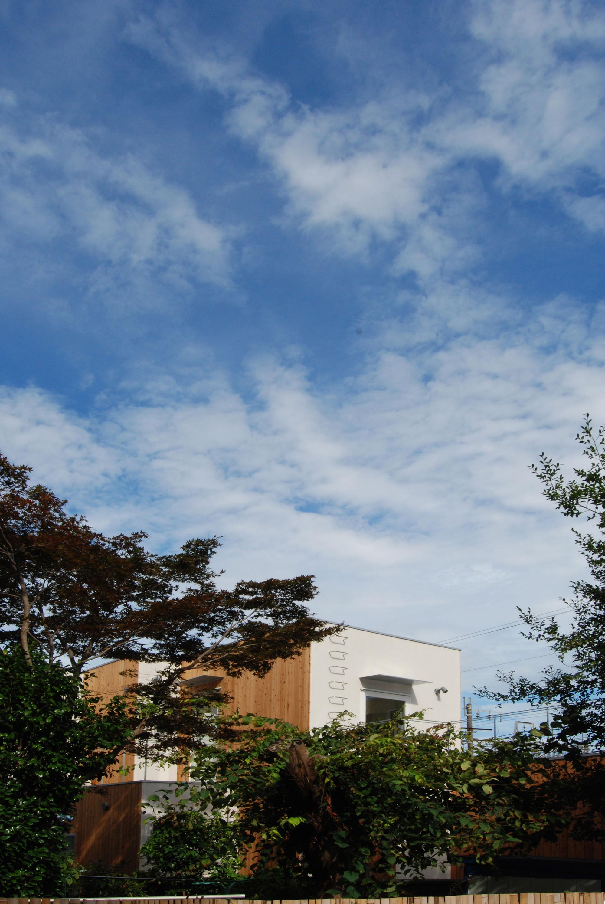 T-House / Satoru Ito Architects