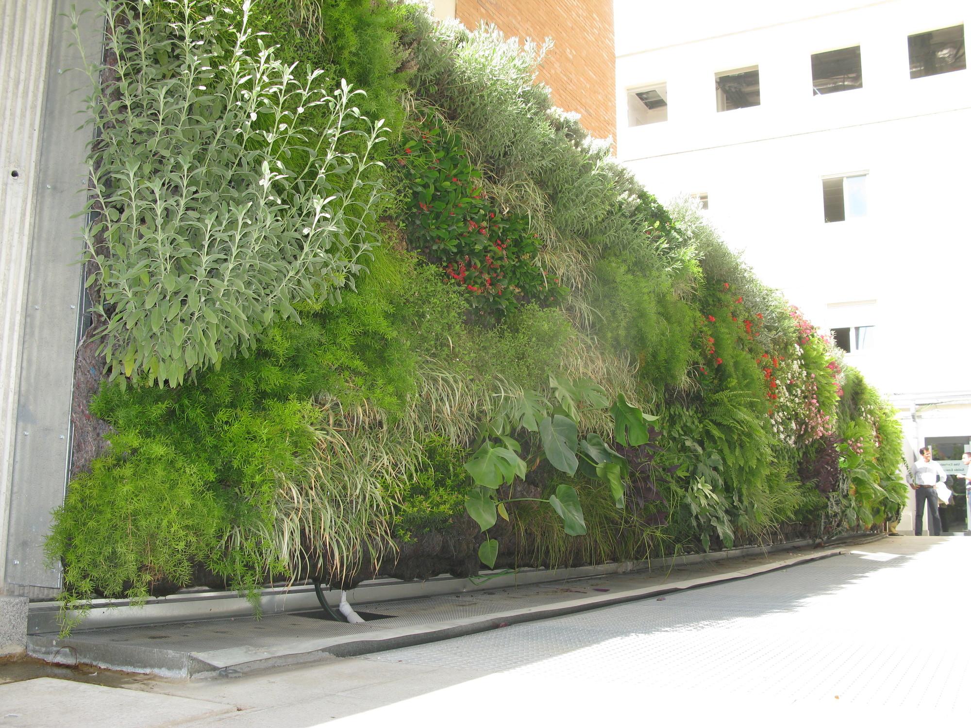Galer a de en detalle jard n vertical en cl nica usp for Jardin vertical sevilla