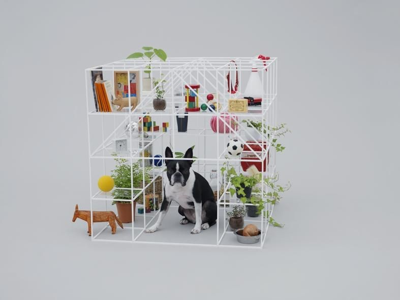 Architecture for Boston Terriers, by Sou Fujimoto. Photos by Hiroshi Yoda, courtesy of Architecture for Dogs