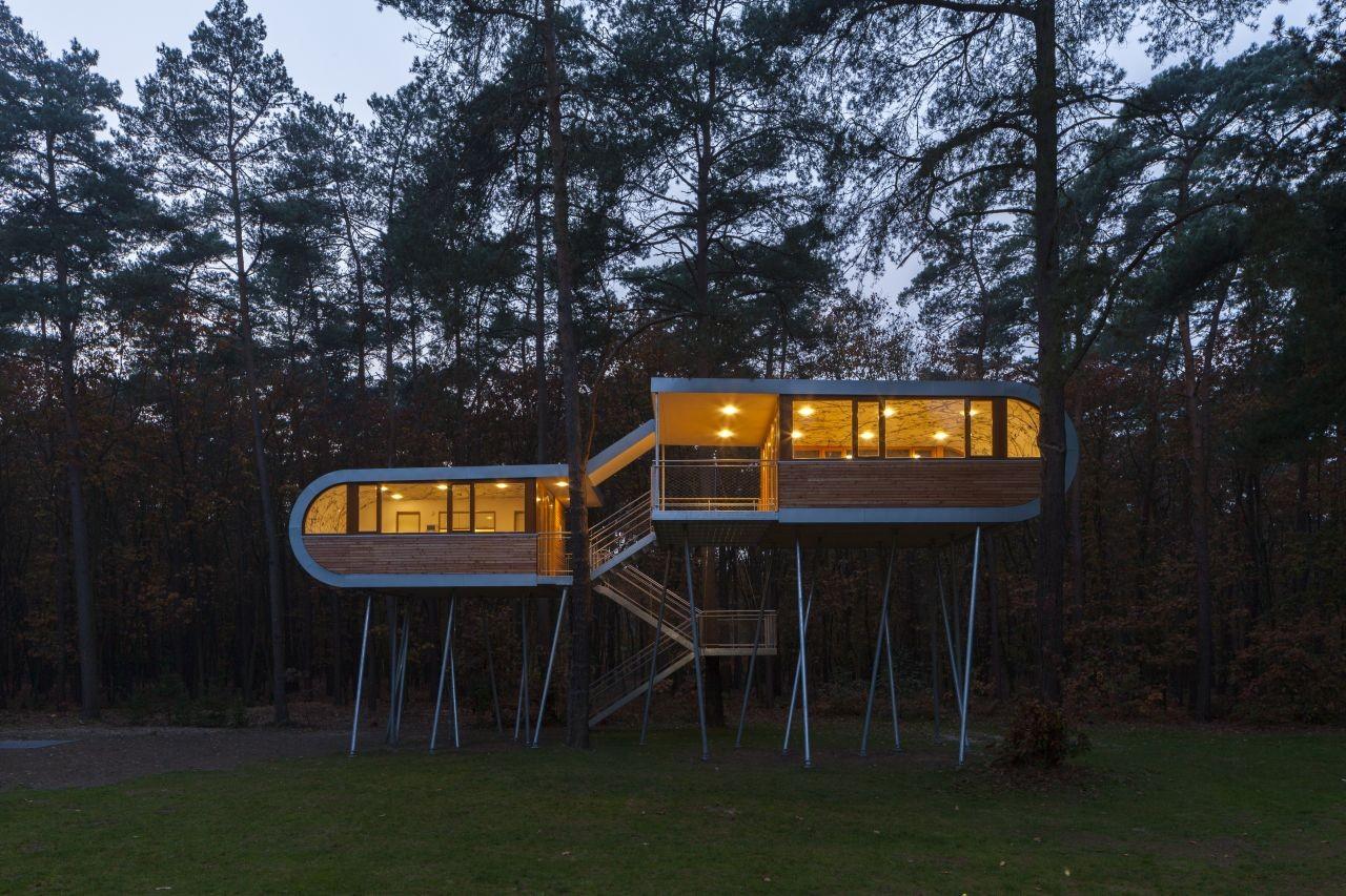 The Tree House / Baumraum