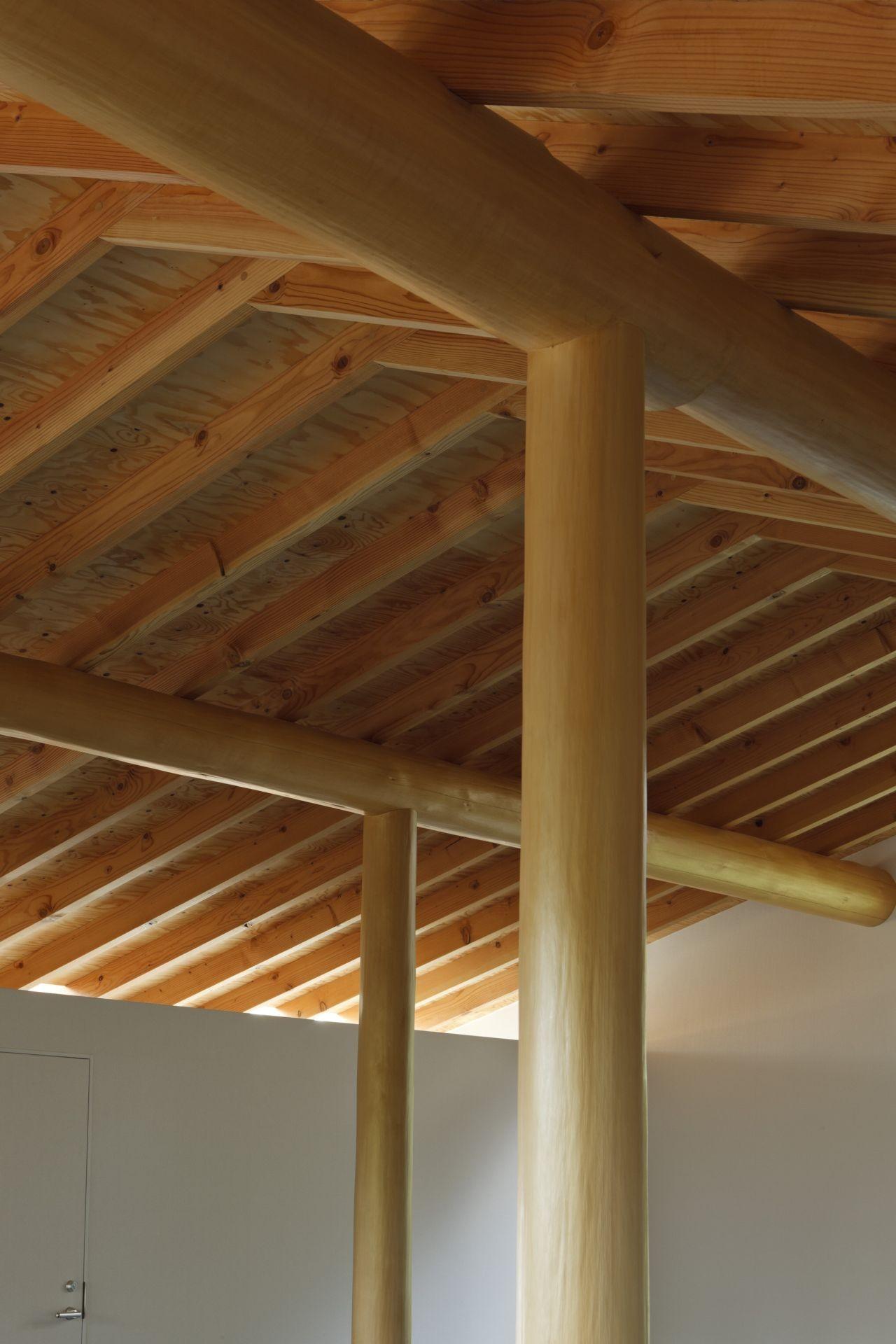 T House / Tsushima Design Studio