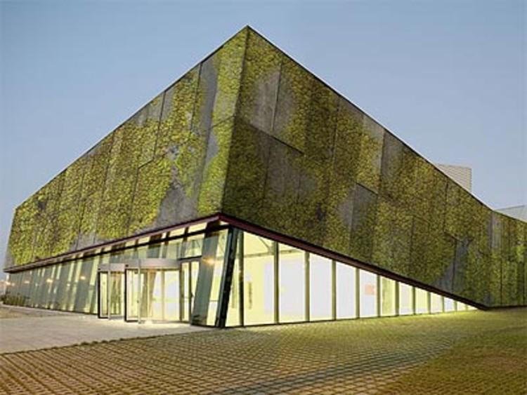 Concreto biológico para muros verdes, © Plataforma Arquitectura