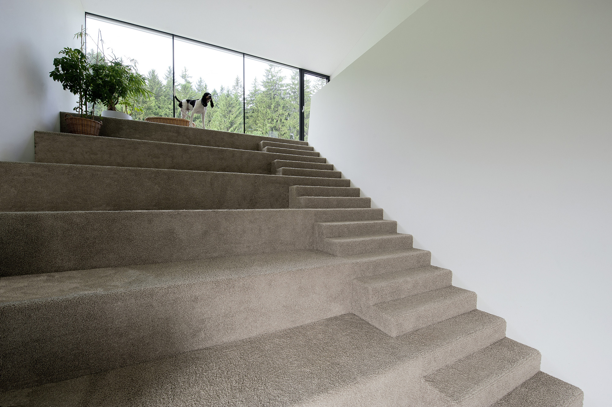 House N / Archinauten Dworschak + Mühlbachler ZT Gmbh