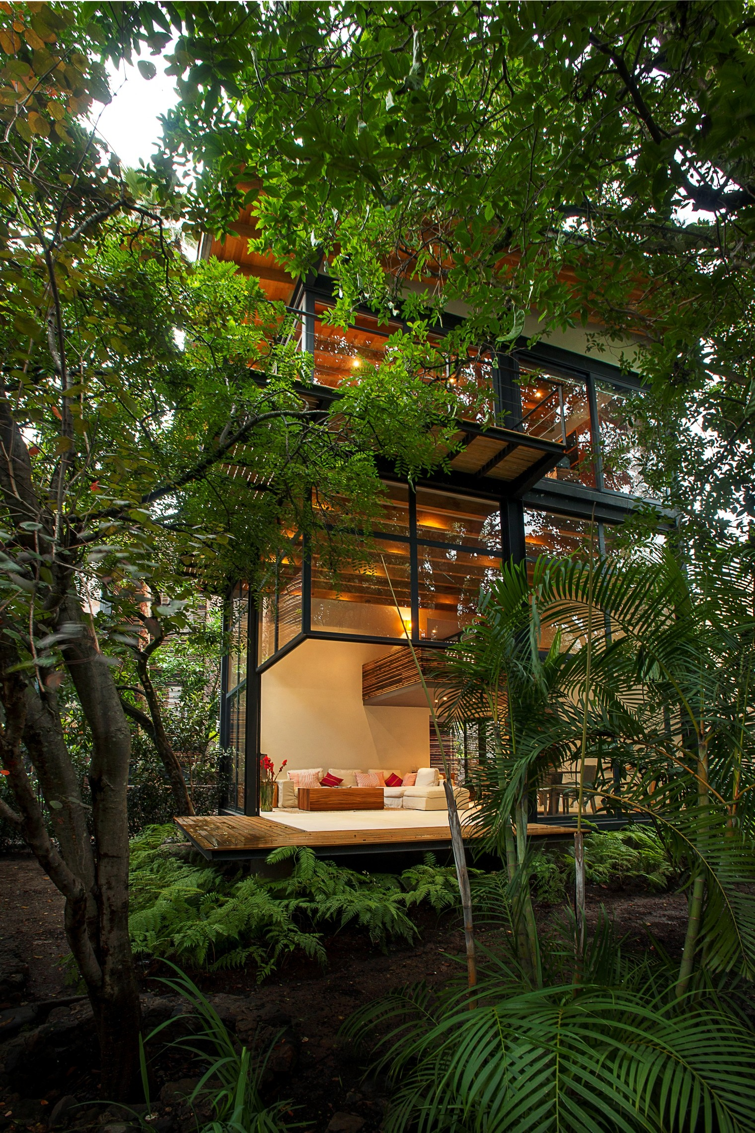 jungle house hall contemporary - photo #26