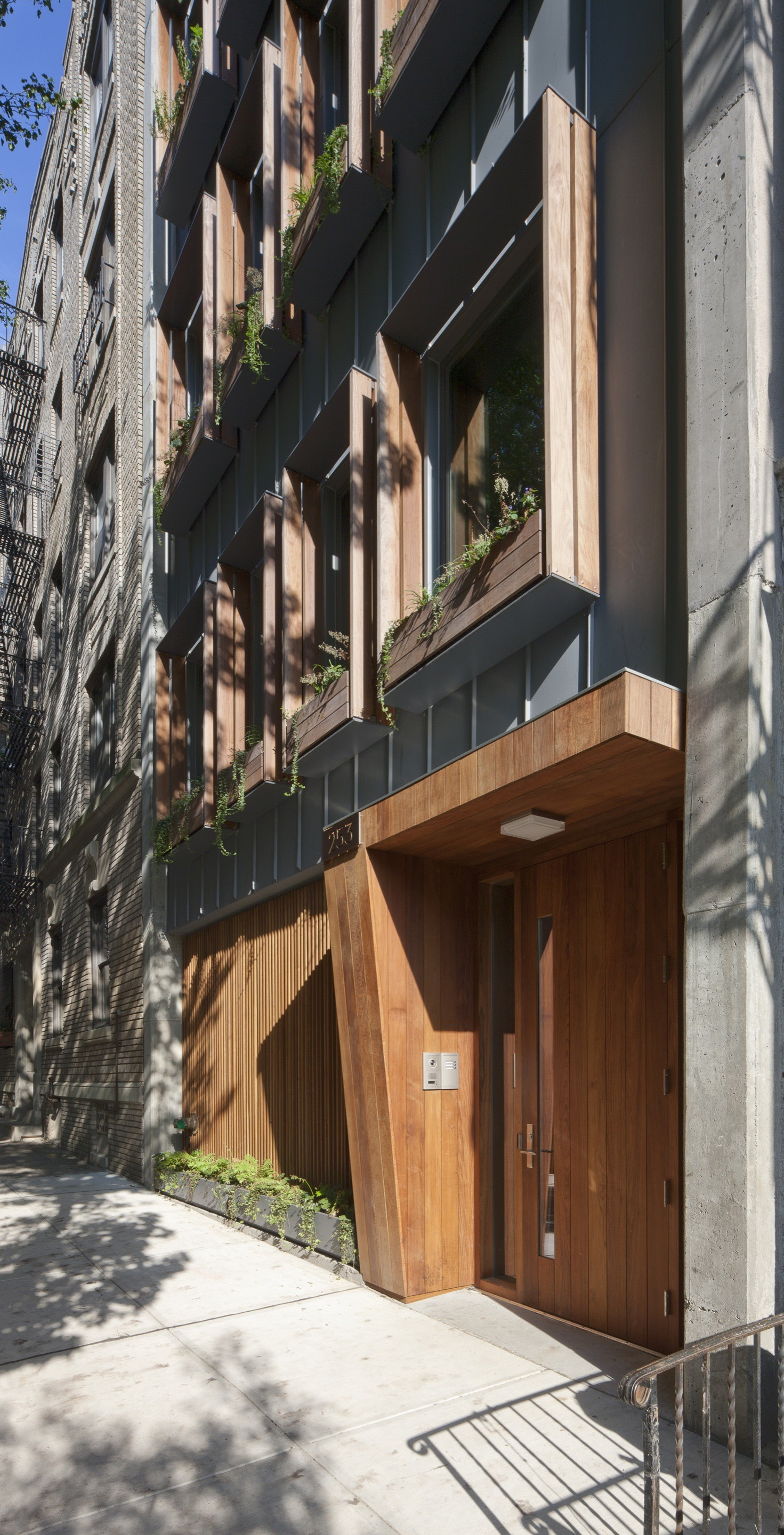 253 Pacific Street / James Cleary Architecture