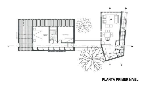 Planta 2 © Ida Pilar Silva Mondselewsky