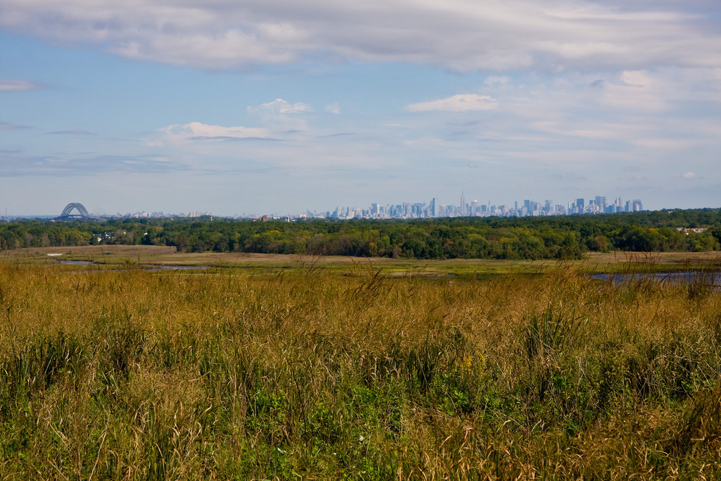 Fresh Kills Park © Flickr User GSZ. Used under <a href='https://creativecommons.org/licenses/by-sa/2.0/'>Creative Commons</a>