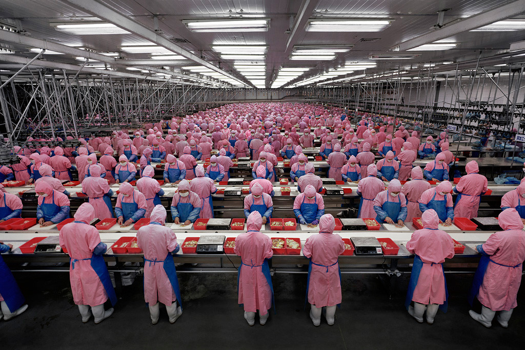 Deda Chicken Processing Plant, Dehui City, Jilin Province, 2005. Photograph, Edward Burtynsky