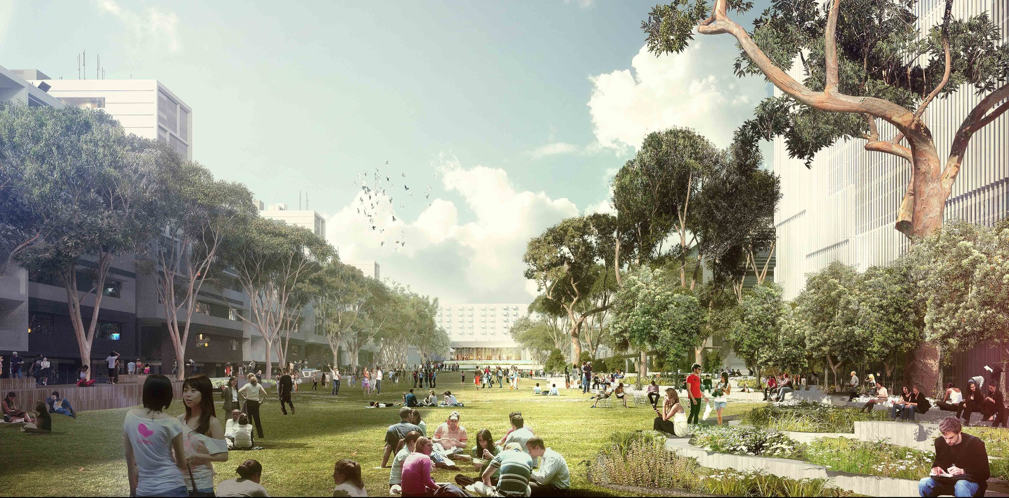 UNSW Alumni Park Competition Entry / ASPECT Studios, Courtesy of ASPECT Studios