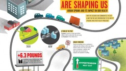 """How Our Cities Are Shaping Us"" Infographic"