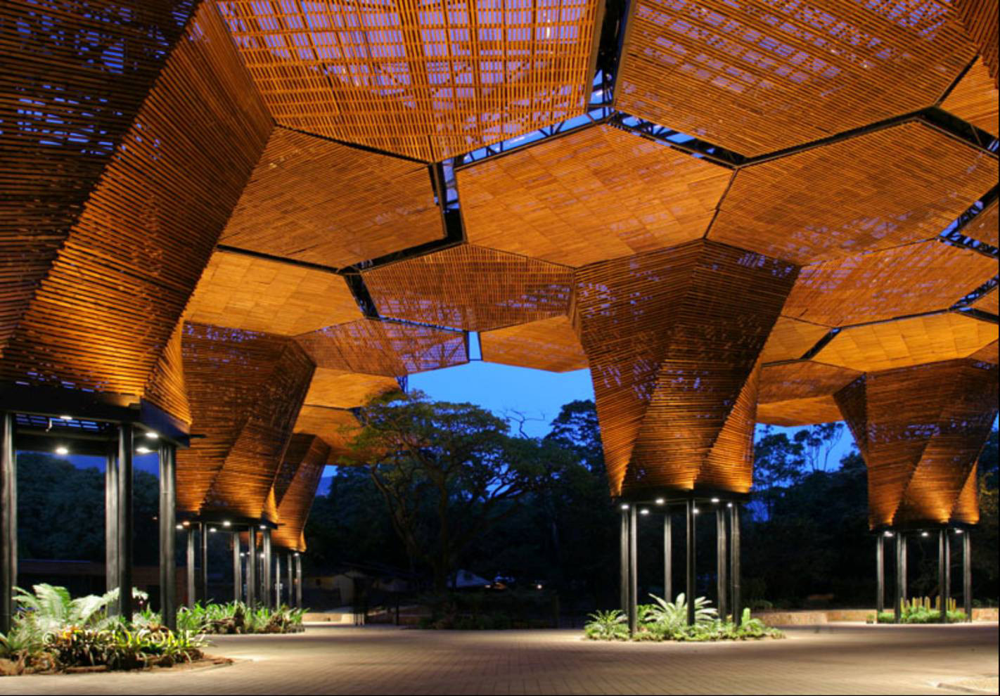 Botanical Garden, Orchids Pavillion, Plan b + JPRCR Architects, photo: Sergio Gomez