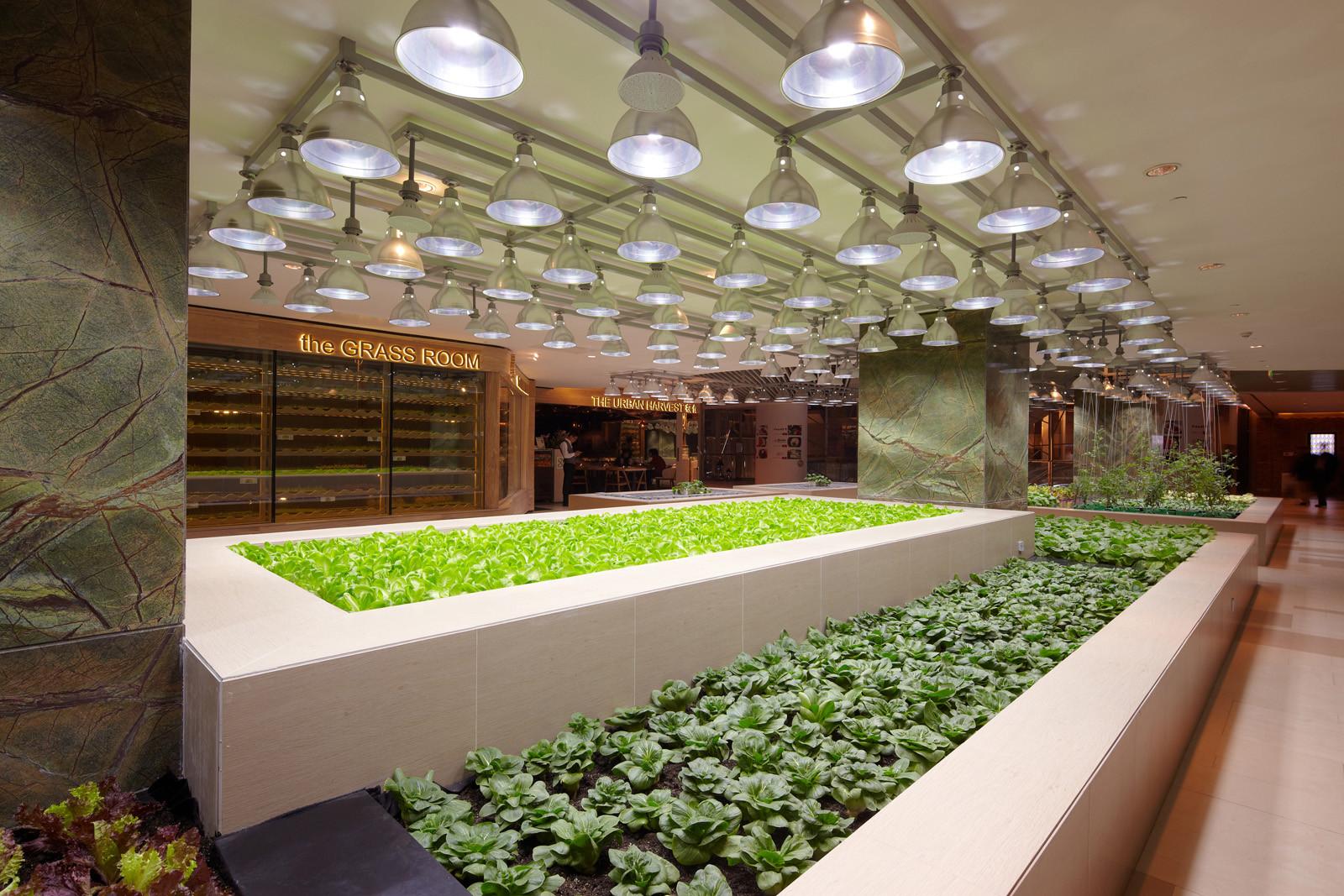 K11 art mall shanghai kokaistudios archdaily for 400 garden city plaza
