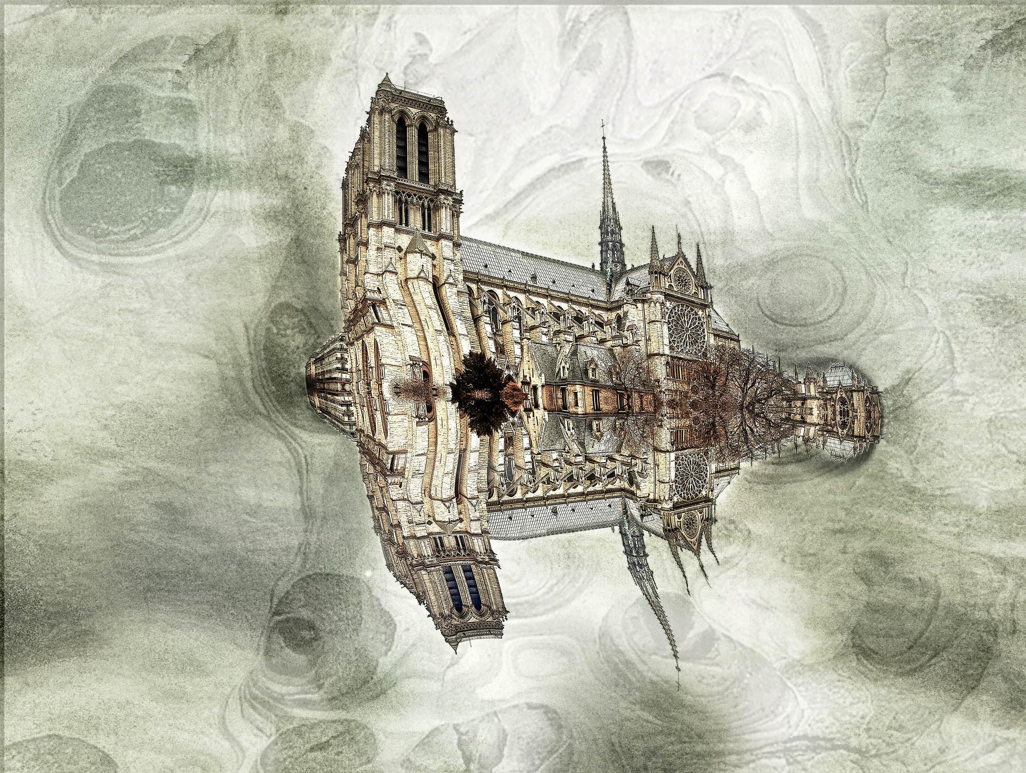 Notre Dame © Robert Montilla . Image © Robert Montilla