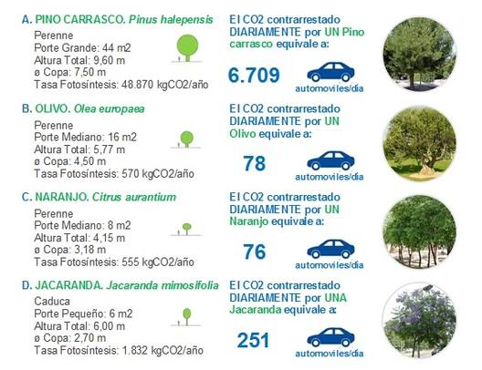 Prancha 3. Capacidade de absorção de CO2 de algumas espécies arbóreas. Imagem Cortesia de Enrique Mínguez Martínez, Pablo Martí Ciriquián, María Vera Moure