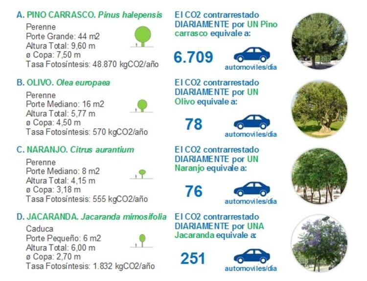 Tabla 3. Capacidad de absorción de CO2 de algunas especies arbóreas. Image Cortesía de Enrique Mínguez Martínez, Pablo Martí Ciriquián, María Vera Moure