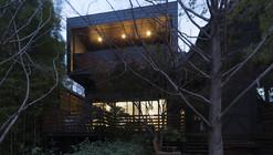 Douglas Street / Wolveridge Architects