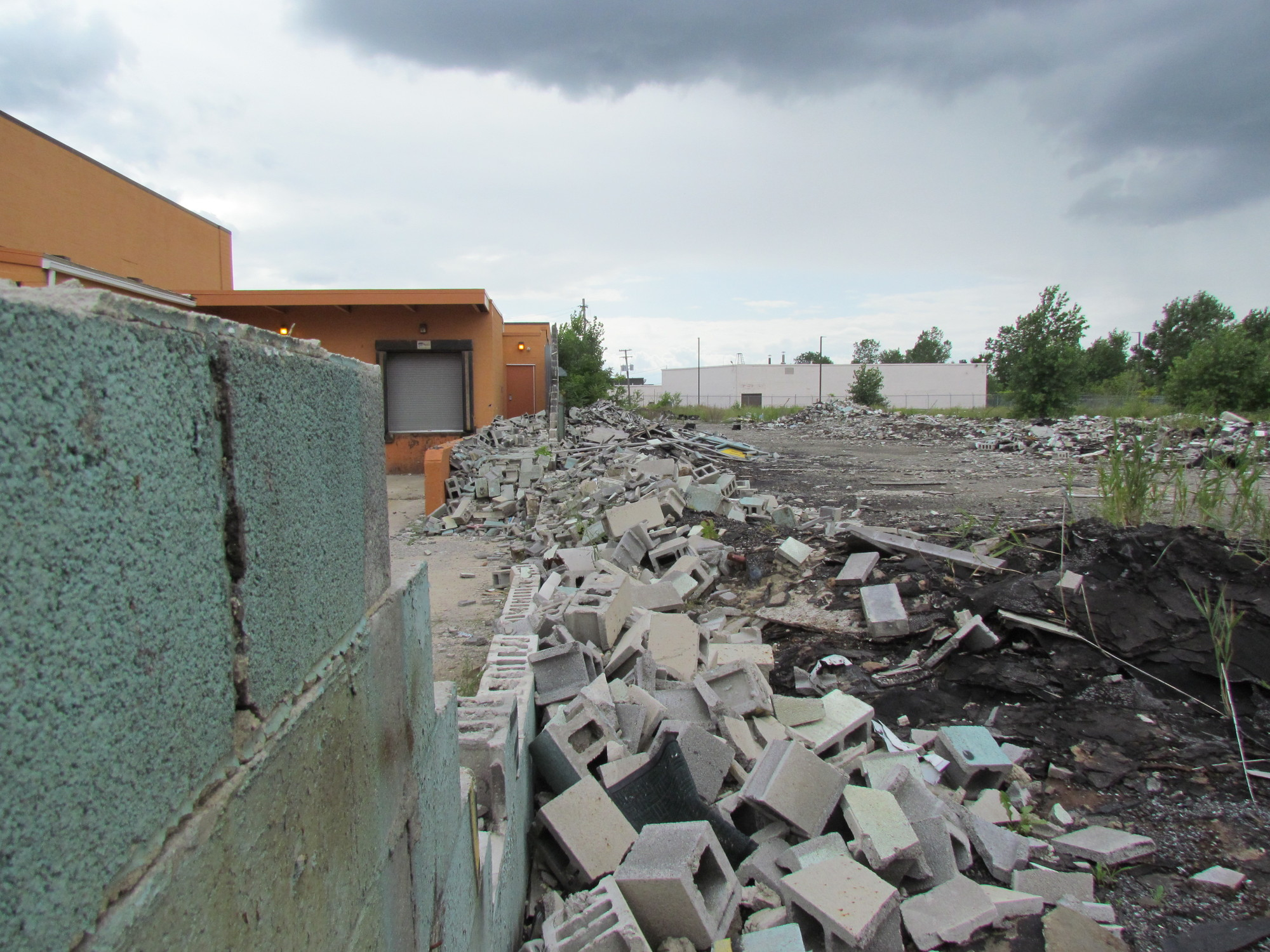 One of the demolition sites listed on the Recycle Detroit website. Image © Christopher Siminski