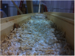 Mushroom Insulation. Image Courtesy of Ecovative via Cradle to Cradle