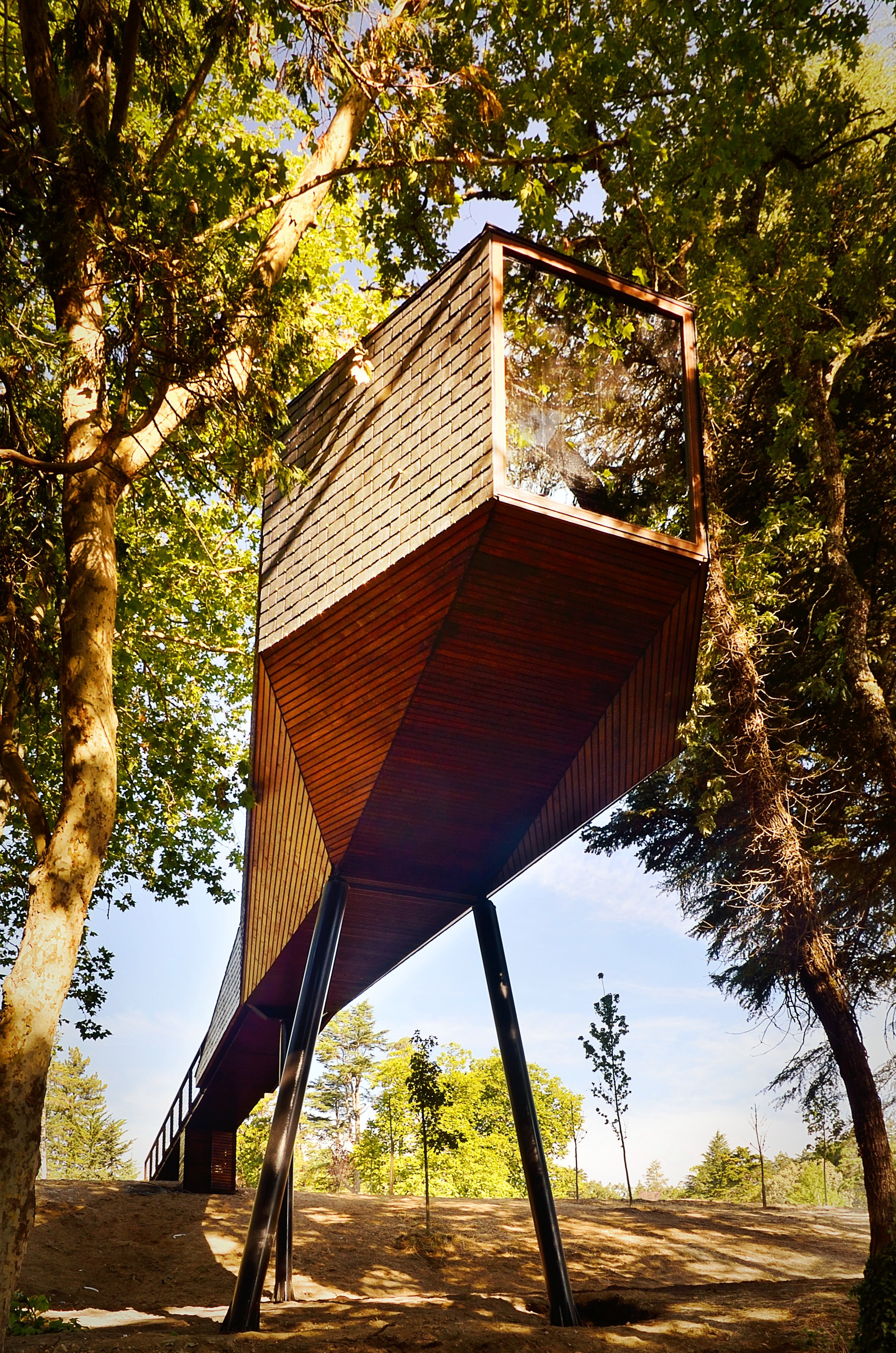 Tree snake houses lu s rebelo de andrade tiago rebelo - Maison tree snake houses luis tiago rebelo andrade ...