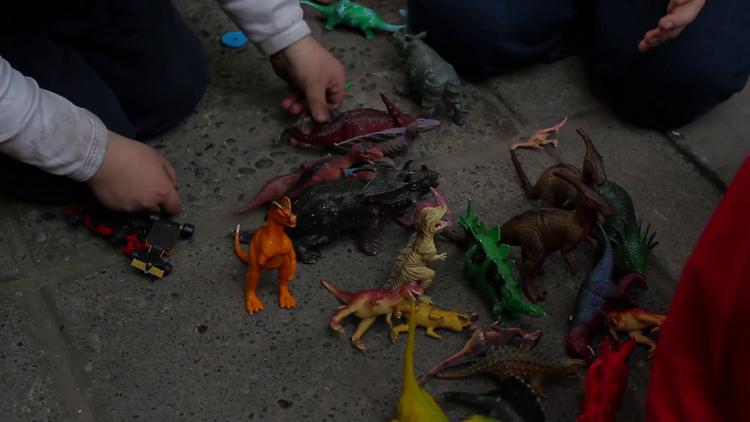 Extinción. Image Cortesía de AFFS