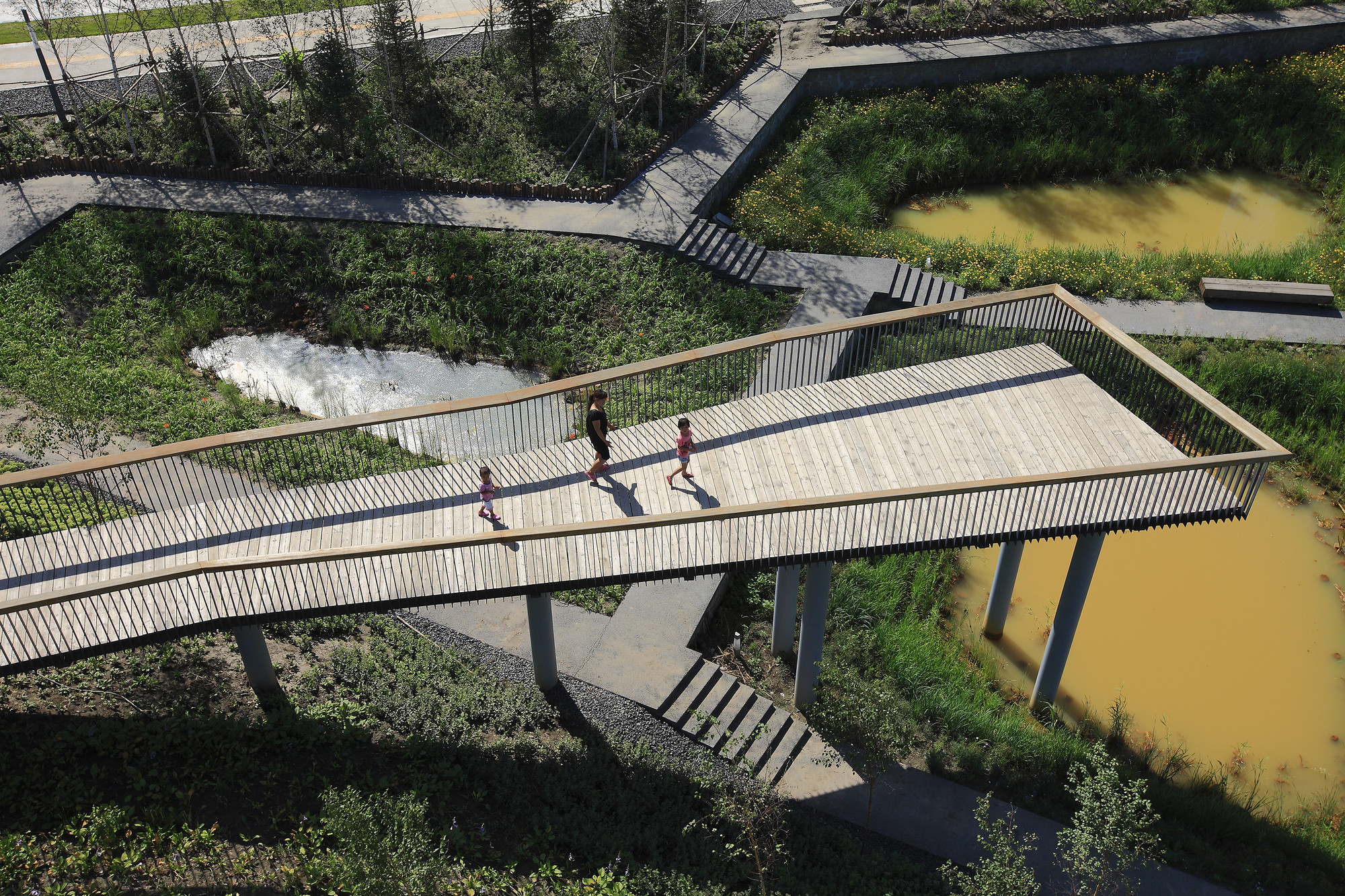 Qunli Stormwater Wetland Park / Turenscape, Courtesy of Turenscape