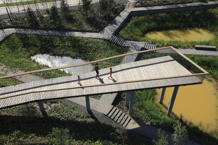 Qunli, Parque de Humedales y Aguas-Lluvias / Turenscape, Cortesía de Turenscape