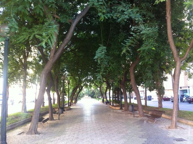 Fig. 18. Elementos vegetales de protección. Paseo Alameda de Cartagena. Murcia.