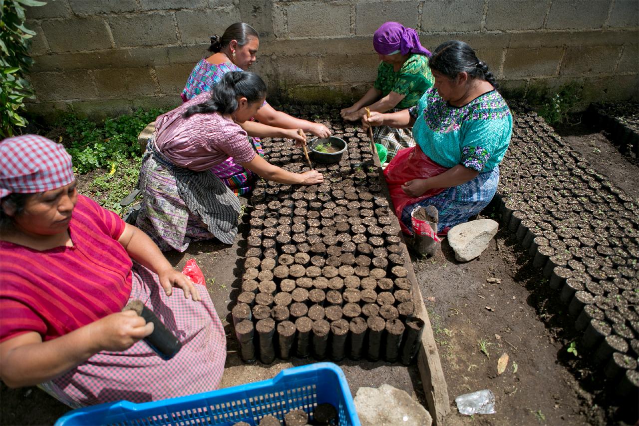 Mujeres Agricultoras de Guatemala. Image © ONU