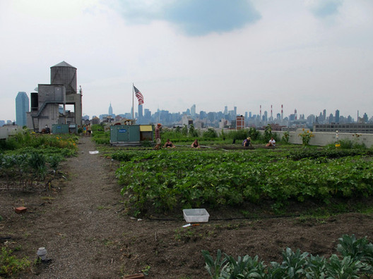 Brooklyn Grange Rooftop Farm. Image Courtesy of Arup Connect