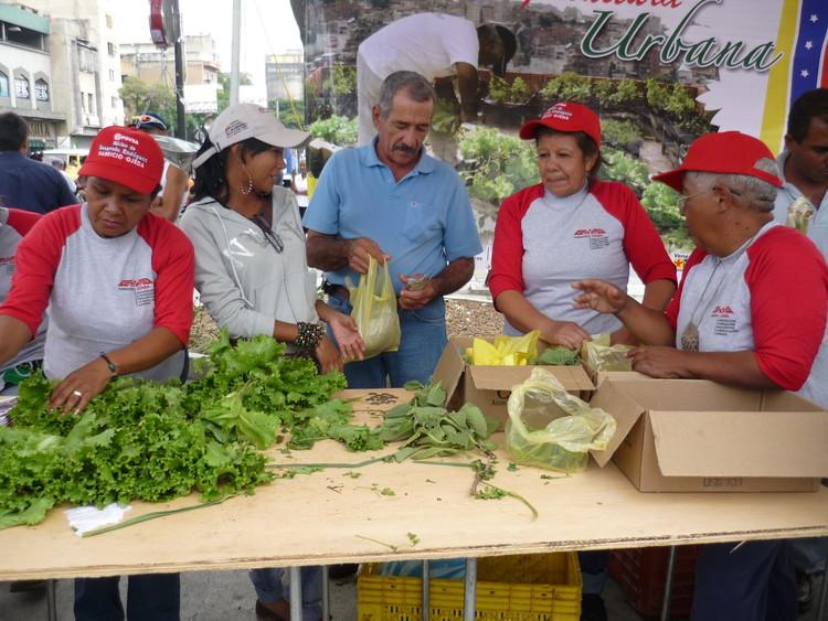 Proyecto de Desarrollo y Consolidación de la  Agricultura Urbana y Periurbana / Caracas, Venezuela. Image © CIARA