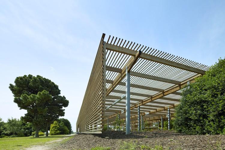 Estructura de madera para el jc raulston arboretum frank for Estructura arquitectura