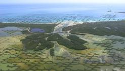 CALTROPe: Un bosque modular de Manglares para enfrentar el cambio climático