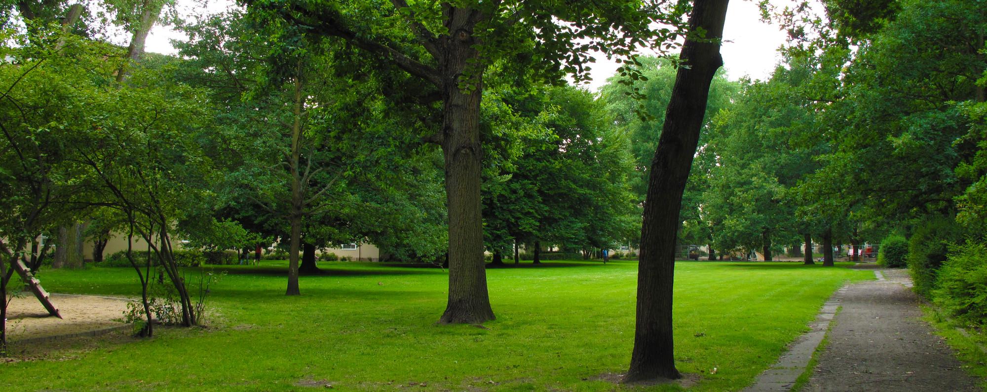 Imagen del gran parque central de la siedlung. Image Courtesy of Óscar Miguel Ares