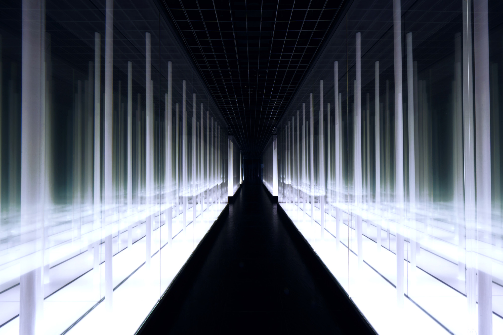 Instalación de luz: Infinity Bamboo Forest por PRISM DESIGN, Courtesy of PRISM DESIGN