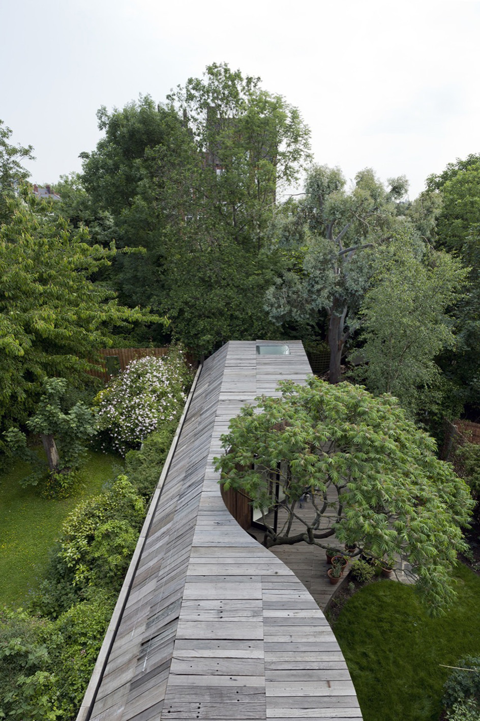 Gallery of tree house 6a architects 6 for Architecture and design tree house