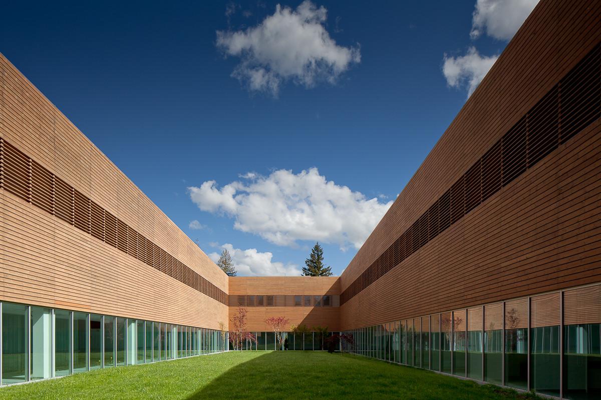 Hospital en Guarda de Aripa Architects. Imagen © José Campos